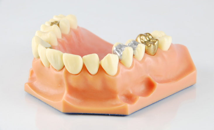 Are you Aware of the Different Types of Teeth & What They do?
